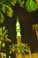 Kahirede Gece