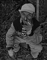 Cigara Molası