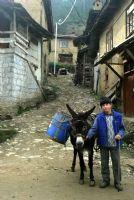 Köyde Bir Çocuk