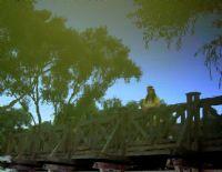 Köprüde Bir Güzel...