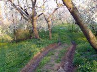 Eskilerden-3 İlkbahar