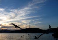 Anadolu Kavağı Günbatımı