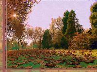 (botanik Parkı) Sonbahardan Kalan Nostalji..