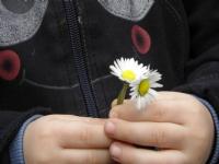 İki Çiçek