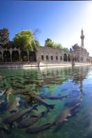 Balıklıgöl- Urfa