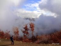 Bulutlar Ve Sis