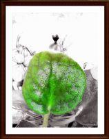 Yeşili Koruyalım