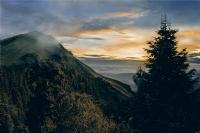 Ormanların Ardındaki Dağ