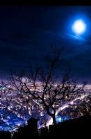 Ay Büyürken Uyuyamam..