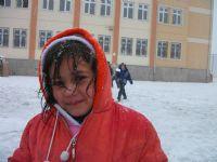 Kış Güzeli
