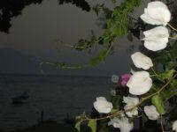 Deniz Kıyısında Bir Görünüm :)