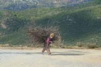 Oduncu Kız