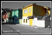 Sinop / Ayancık