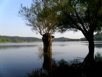 Ödemiş Gölcük Gölü