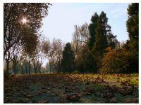 (botanik Parkı) Sonbahardan Kalan Nostalji 2