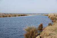 Kuş Cennetinin Güzelim Gölleri