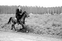 Yaşlı Dede Ve Atı