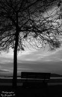 Nerdesin Yalnızlık
