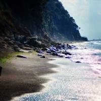 Coastal -wave