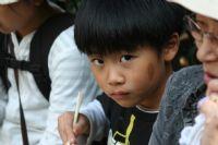 Meraklı Japon Çocuk