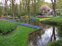 Lale Bahçesi