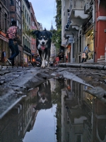 Galata' Dan Yansımalar 5