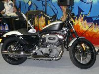 O Bir Harley