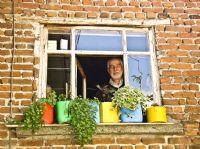 Pencere Güzeli