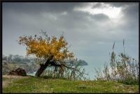 Antalya'da Kış