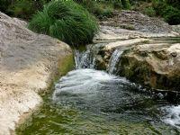 Suyun Yeşilliği...
