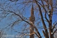 Minare