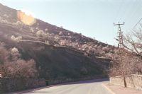 Ali Dağı Etekleri