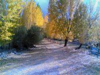 Sonbahar Ve Hüzün