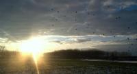 Gün Batımı,kar Ve Kuşlar