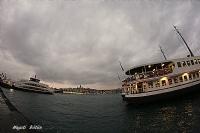 Balığın Gözüyle  İstanbul ...