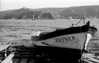 Zeynep Teknesi