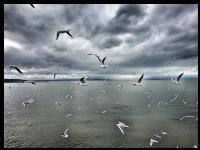 Beyşehir Gölü 2