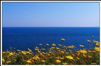 Akdeniz'in Verdiği Özgürlük Hissi