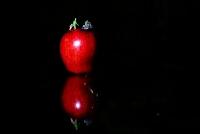 """Miniciks Hayatlar """" Kızıl Elma """""""