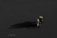 Gölge . . . - Fotoğraf: Seyfi Şeren