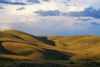 Tepeler